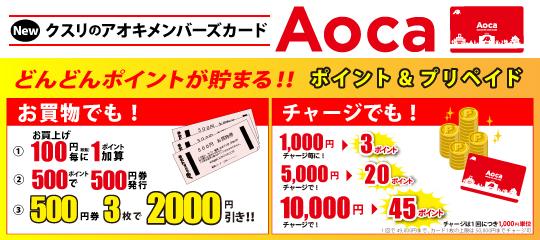 slide03_Aocaポイント