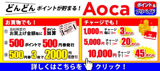 03_Aocaポイント